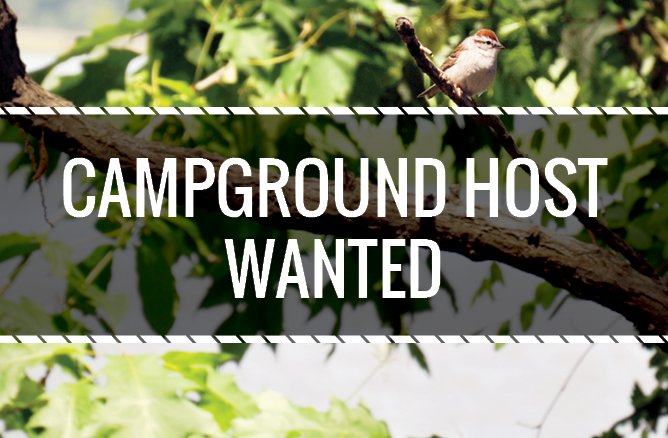 Campground Host Needed_Final6