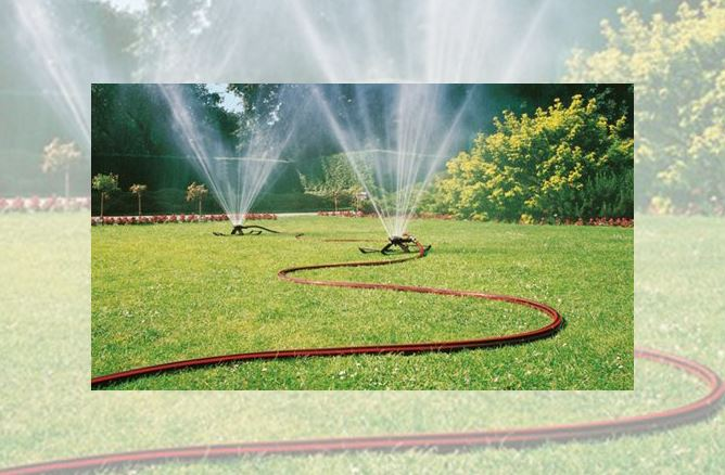 Sprinklers and hose on lawn